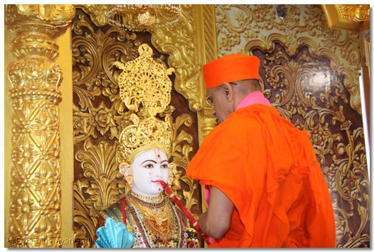 Grand opening of Shree Swaminarayan Mandir, Chicago, USA