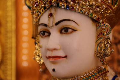 Divine darshan of Lord Shree Swaminarayan on New Year's day