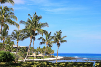 Breathtaking Hawaiian scenery on the resort