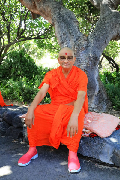 Divine darshan of Acharya Swamishree seated amongst the greenery by the beachside