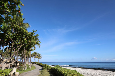 Scenic views of palm trees and sandy beaches by the resort