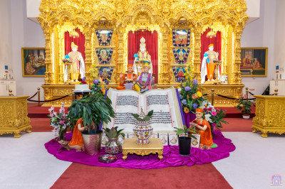 Divine darshan of the Lord with the plants