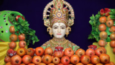 Pomegranate Utsav at Shree Swaminarayan Mandir Maninagardham